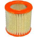 FRAM® CA3902 Extra Guard Round Plastisol Air Filter - Pkg Qty 2