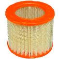 FRAM® CA3924 Extra Guard Round Plastisol Air Filter - Pkg Qty 2