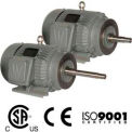 Worldwide Electric CC Pump Motor WWE5-36-184JM, TEFC, Rigid-C, 3 PH, 184JM, 5 HP, 3600 RPM