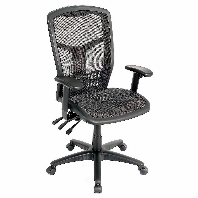 Mesh Interion 174 Task Chair