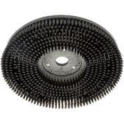 "Global Industrial™ 13"" Scrub Brush for 13"" & 26"" Auto Floor Scrubber"