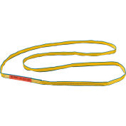 Global Industrial™Poly Web Sling, HD, Endless w/ Durable Edge, 6Ft L-3200/2500/6400 Lbs Cap