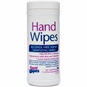 2XL CareWipes Alcohol Free Hand Sanitizing Wipes - 2/Case - 2XL-470