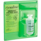 Eye And Face Wash 16 Oz. Single Bottle Station