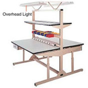 Overhead Light Kit for Single Sided Flexline Unit