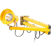 """Wesco® 272260 Double Arm Dock Light with 60"""" L Reach"""