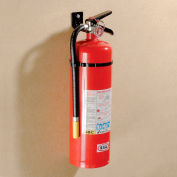 Fire Extinguisher Dry Chemical 10 Lb.