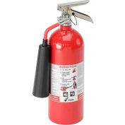 Fire Extinguisher Carbon Dioxide 5 Lb.