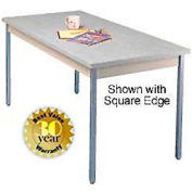 "Gray Activity Table - Radius Edge Top - 30""W X 60""L"