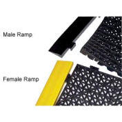 YELLOW MALE RAMP 12in X 2.5in