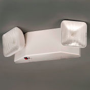 TCPI 20760 Emergency Light