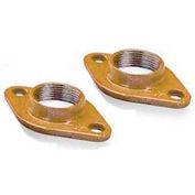 """3"""" Bronze Pump Flange Kit (PL-130) 101218"""