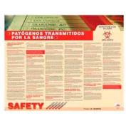Poster, Bloodborne Pathognes (Spanish), 24 x 30