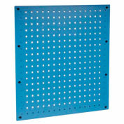 "18""W x 19""H Pegboard Panel-Blue"
