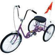Industrial Tricycle 250 Lb Capacity Single Speed Coaster Brake Purple
