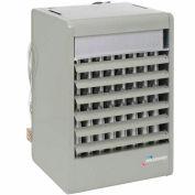Modine High Efficiency 250000 BTU Gas Fired Unit Heater PDP250AE0130SBAN