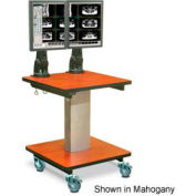 "Telescopic Cart™ w/ 2 Monitor Arms - Grey 24""W x 24""D x 28""H"