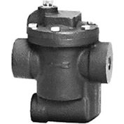 Hoffman Specialty® B0125A-2 Inverted Bucket Steam Trap 404182, 1/2""