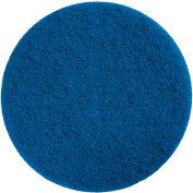 HD Scrubber Pad - Blue (10/case) - Pkg Qty 5