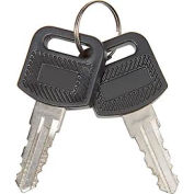 Set of 2 Replacement Keys for Charging Cabinets/Carts 985748, 251761, 987877, 987878, 670051, 670052