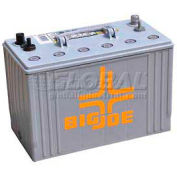 Battery for Big Joe® 4500 Lb. Electric Pallet Truck Global #987633