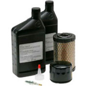 Briggs & Stratton, Maintenance Kit for Standby Generator Model 40351
