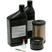 Briggs & Stratton, Maintenance Kit for Standby Generator Model 40351