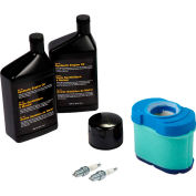 Briggs & Stratton, Maintenance Kit for Standby Generator Model 40326