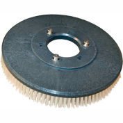 """18"""" Poly Scrub Brush for 18"""" Electric Floor Scrubber"""