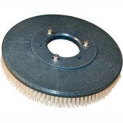 "13"" Poly Scrub Brush for 26"" Auto Floor Scrubber"