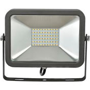 Global™ LED Flood Light, 30W, 2700 Lumens, 5000K, w/Mounting Bracket