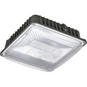 Global™ LED Canopy Light, 50W, 4500 Lumens, 5000K, Low Profile