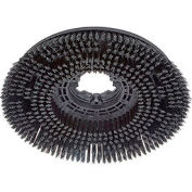 "17"" Scrub Brush for 17"" Floor Machine"