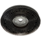 "13"" Scrub Brush for 26"" Auto Floor Scrubber"