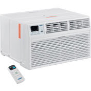 Through The Wall Air Conditioner 8,000 BTU, Cool with Heat, 115V