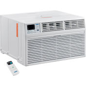 Through The Wall Air Conditioner 10,000 BTU, Cool with Heat, 208/230V