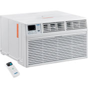 Through The Wall Air Conditioner 12,000 BTU, Cool with Heat, 208/230V