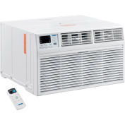 Through The Wall Air Conditioner 14,000 BTU, Cool with Heat, 208/230V