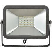 Global Industrial™ LED Flood Light, 30W, 2700 Lumens, 5000K, w/Mounting Bracket