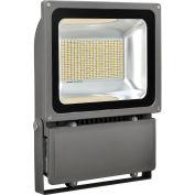 Global Industrial™ LED Flood Light, 150W, 15000 Lumens, 5000K, w/Mounting Bracket