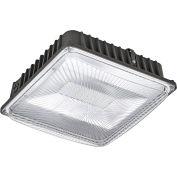 Global Industrial™ LED Canopy Light, 50W, 4500 Lumens, 5000K, Low Profile