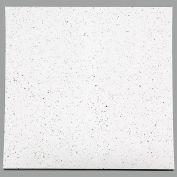 Genesis Recycled PVC Ceiling Tile 723-00, Waterproof & Washable, 2'L x 2'W, Flecked - 10/Case - Pkg Qty 10