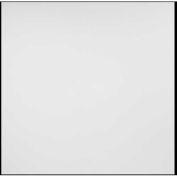 Genesis Designer Border Fill PVC Ceiling Tile 756-00, 2'L X 2'W, White - 12/Case