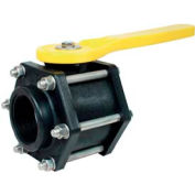 "2"" Standard Port M x F Bolted Ball Valve"