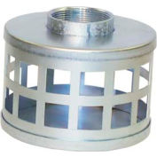 "6"" FNPT Plated Steel Square Hole Strainer"