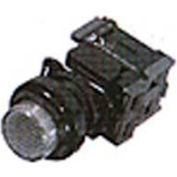 Advance Controls 121229, 22mm Non Metallic Push To Test Pilot Light-Full Volt. Sq. Push Button - Red