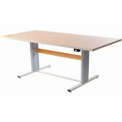 """Infinity™ Powered Height Adjustable Group Therapy Table - 48""""Lx36""""W Maple"""