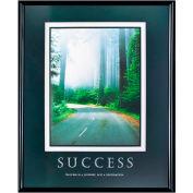 "Success, Framed, 24"" x 30"""