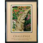 "Challenge (Path), Framed, 24"" x 30"""