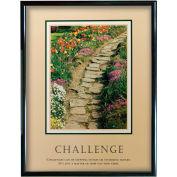 "Challenge (Path), Framed, 24"" x 30"""